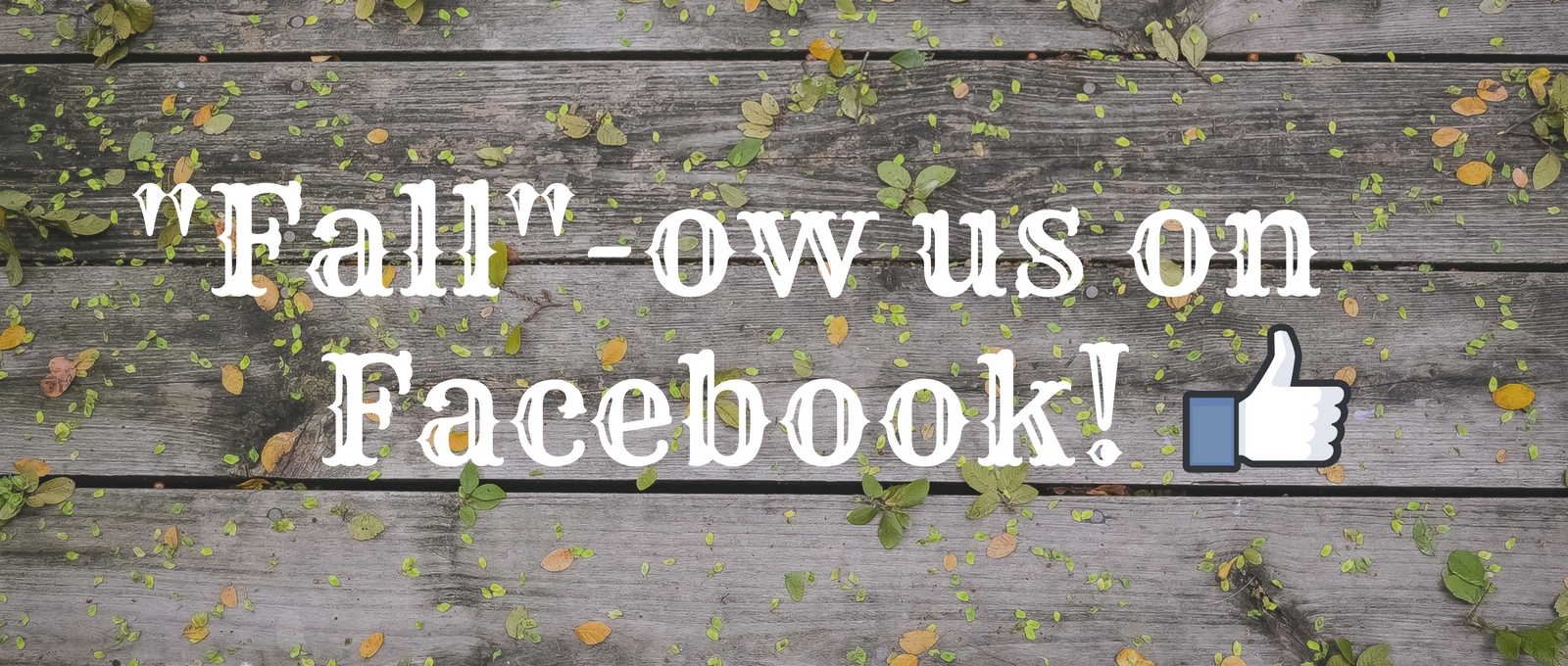 Fall-ow us on Facebook